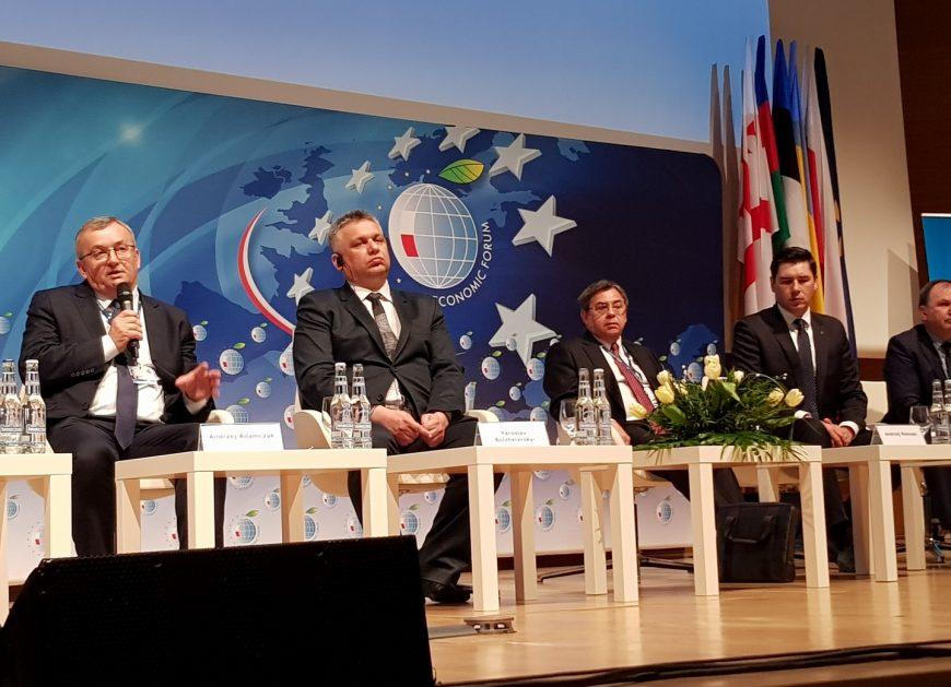 NaKolei.pl - XI Forum Europa-Ukraina: Polsce zależy na rozwoju korytarzy Europa-Azja