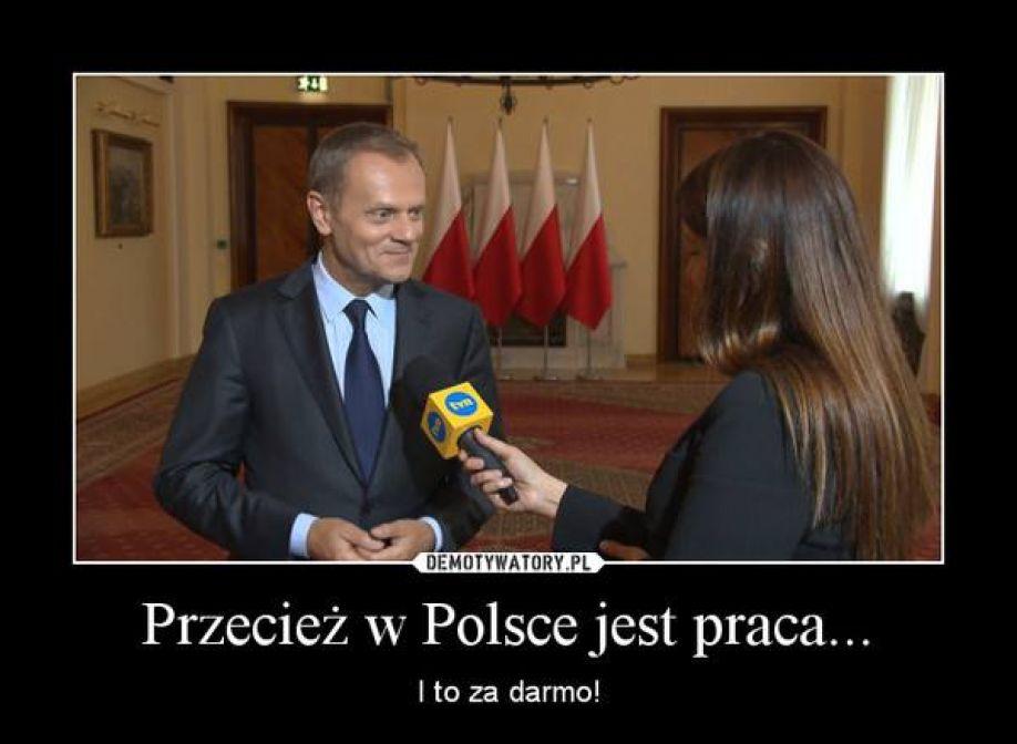 Przecież w Polsce jest praca… i to za darmo!