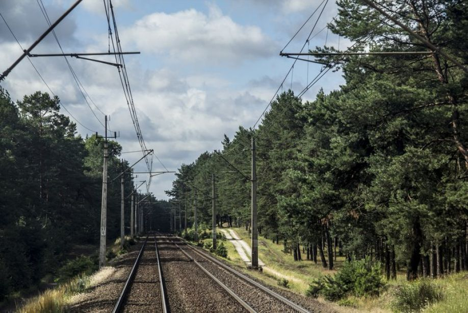 Bezpieczeństwo na kolei nie tylko dla ludzi