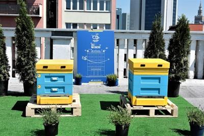 Pszczoły w…PKP Cargo