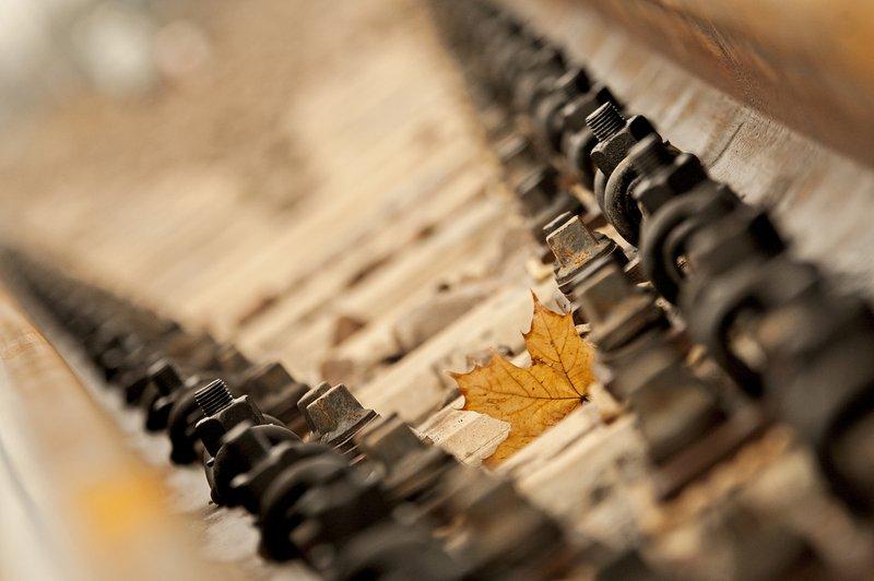 NaKolei.pl - Trudna jesień na kolei. Duży wiatr, duże opóźnienia