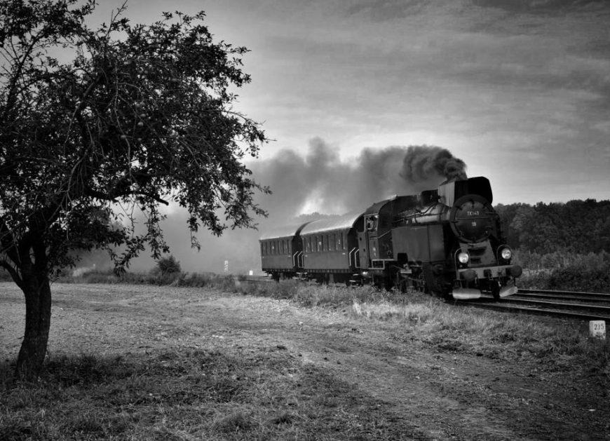 NaKolei.pl - Opat, Alchemik, Zamek, Hilbert - specjalne pociągi pojadą już 10 lutego