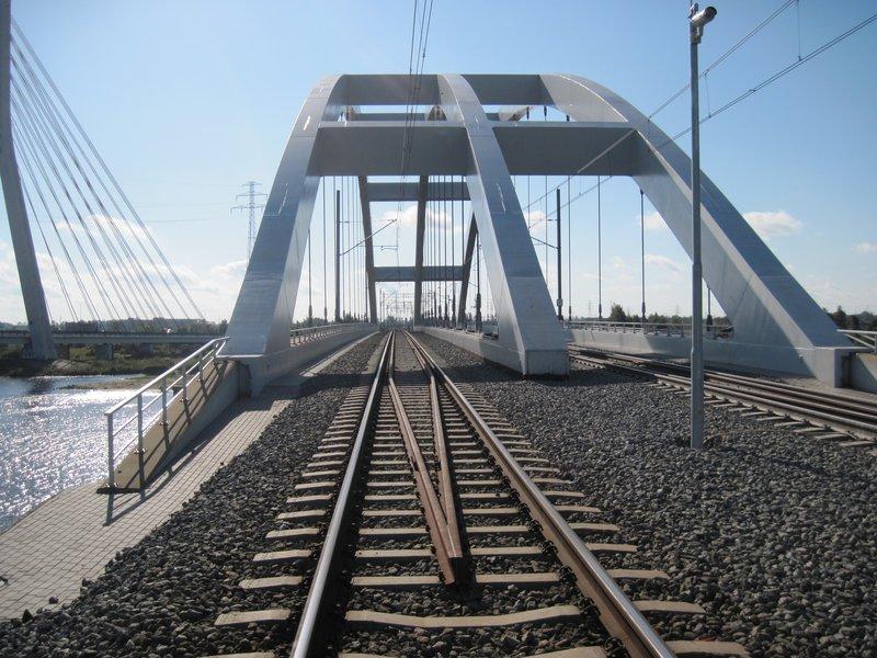 Mewy przy moście kolejowym
