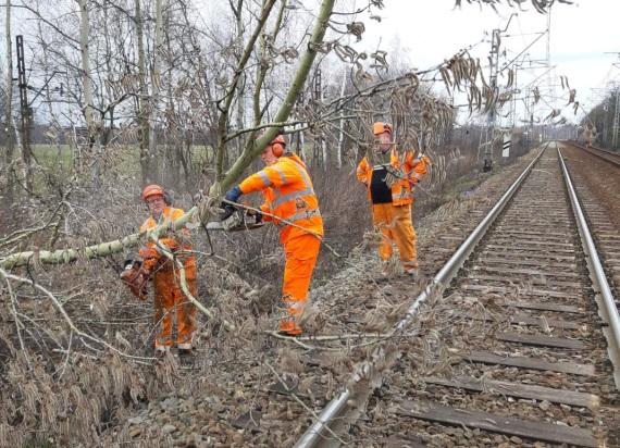 PKP PLK: Po wietrznym poniedziałku linie kolejowe przejezdne