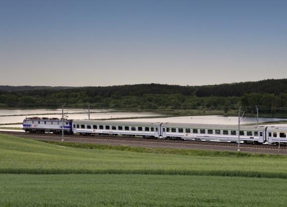 """Pierwszy duży przetarg kolejowy CPK. Inwentaryzacje przyrodnicze dla 10 """"szprych"""""""