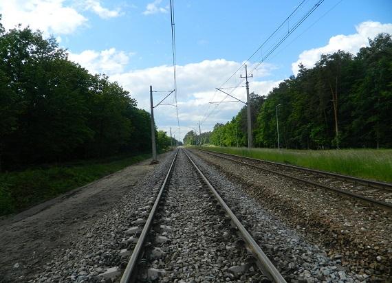 Od 13 czerwca znów pojedziemy pociągiem z Przeworska do Stalowej Woli